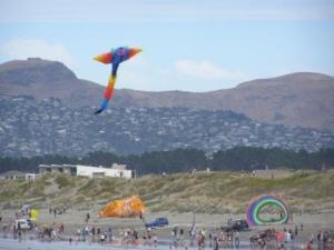 kite day is getting ready as crowds gather