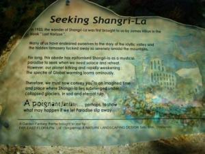 4-singapore-web-blog-p3101857
