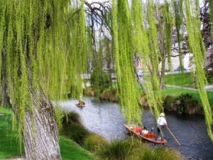 Punting the Otakaro, Avvon or Avon Christchurch, NZ