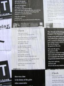 web poetry poster cheek
