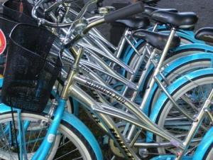 web bikes closeup