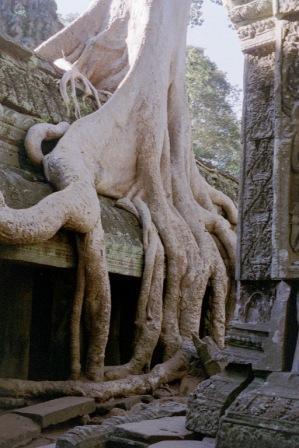 cambodia ruins2
