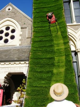 try mowing this lawn!