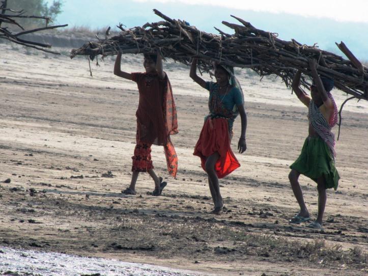 women of the salt plains gujarat