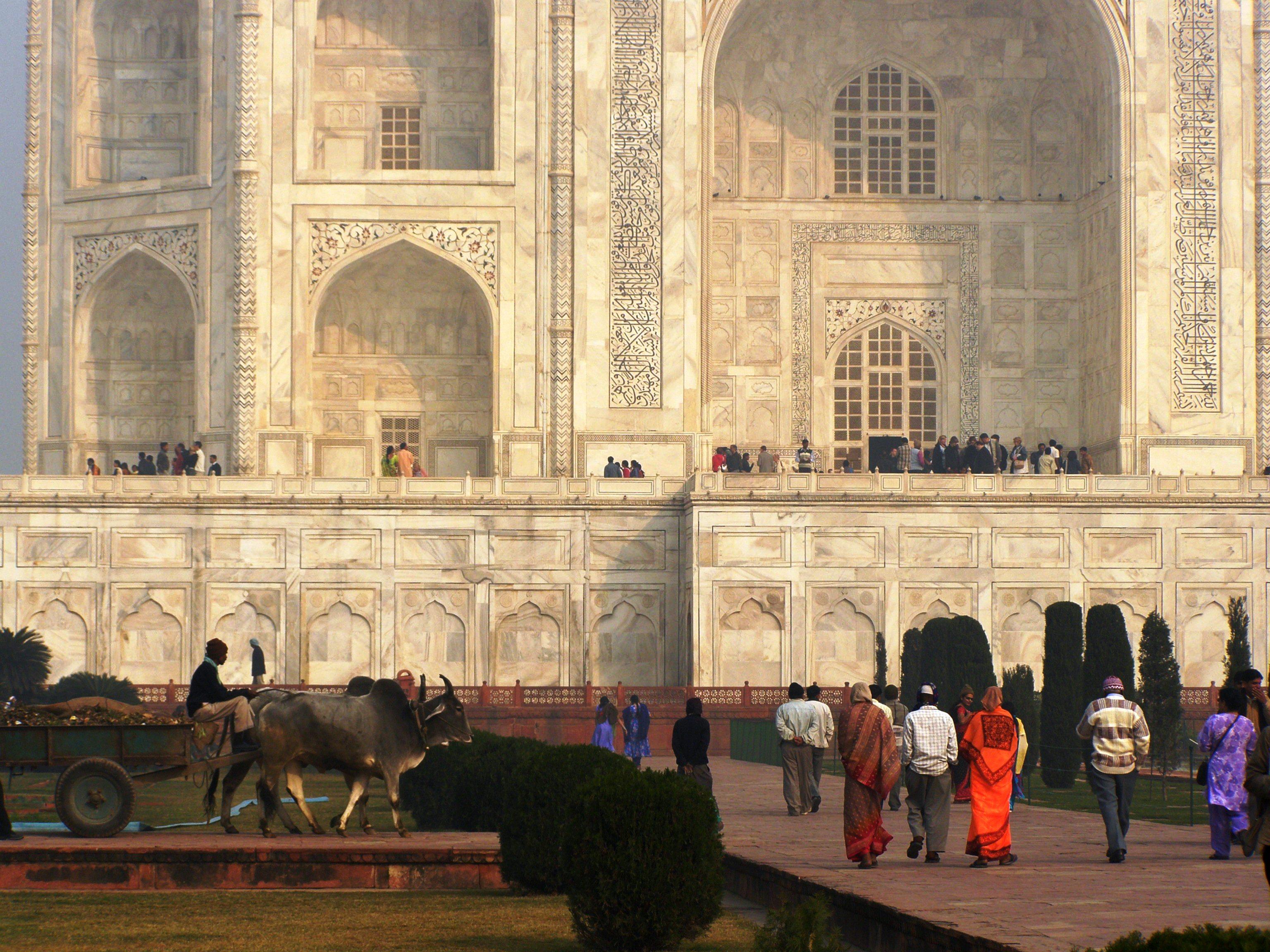 Taj Mahal: beautiful! – Kiwi Travel Writer talks food, travel, and tips
