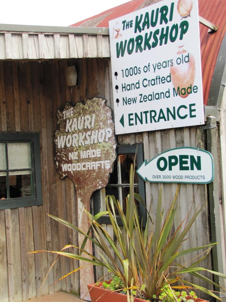 kauri workshop IMG_8717