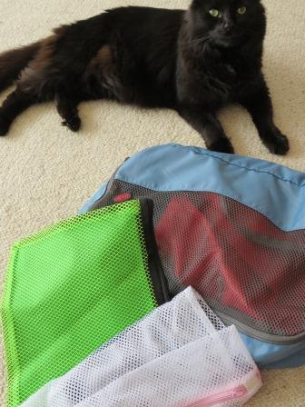 My cat - Mista - is alert once these bags appear .. false alarm this time!