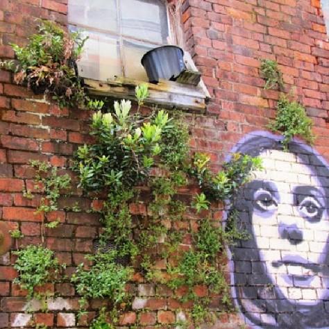 Wellington street art.