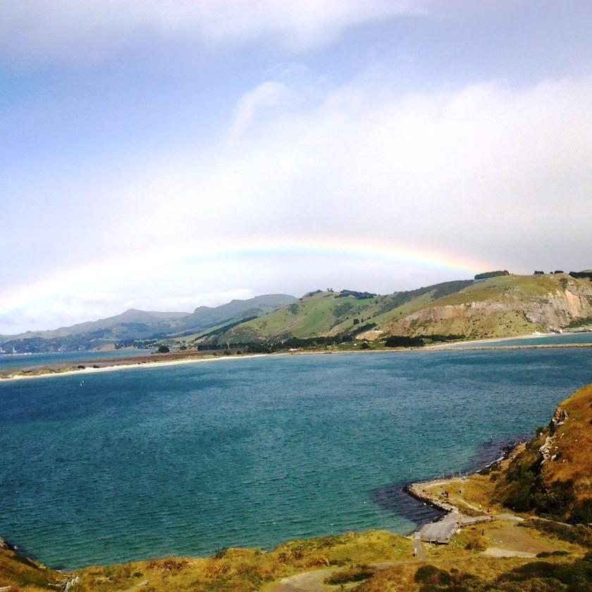 dunedin rainbow IMG_20140123_163041