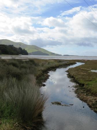 Hoopers Inlet. Otago Peninsula. Dunedin New Zealand