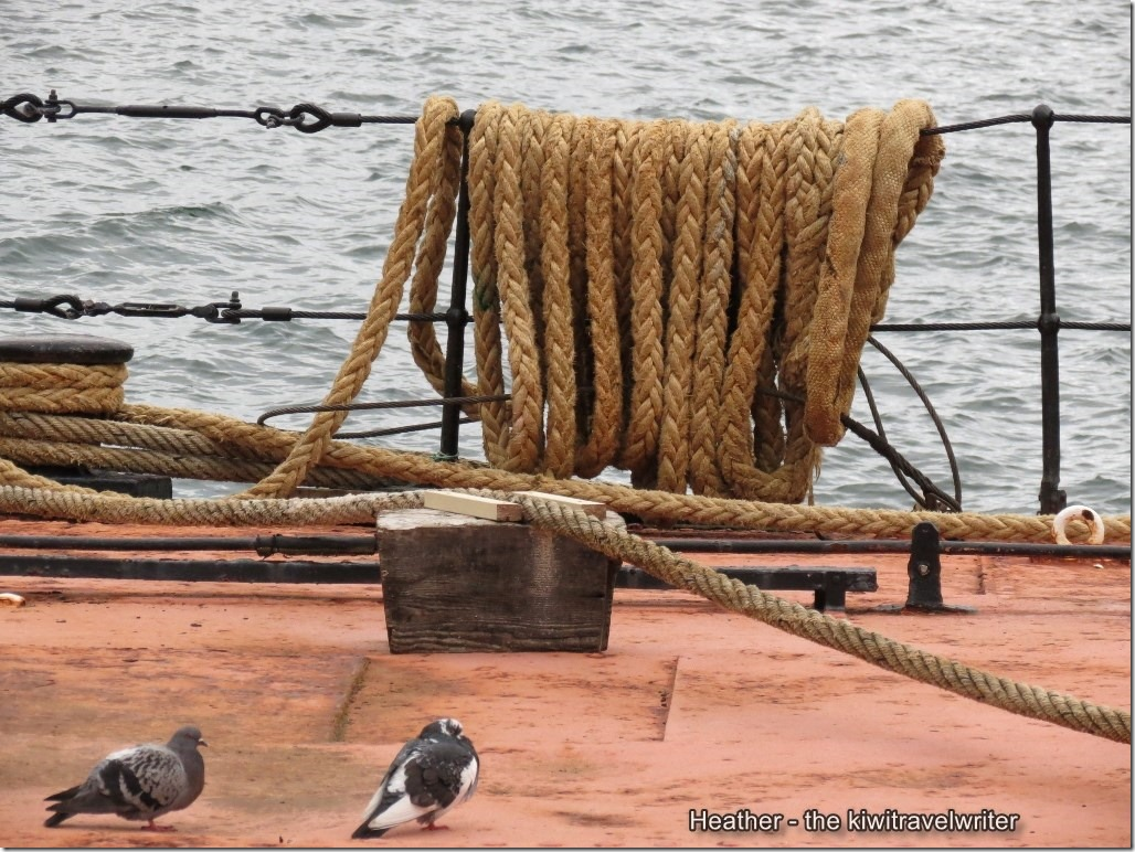 watermarked-ropes