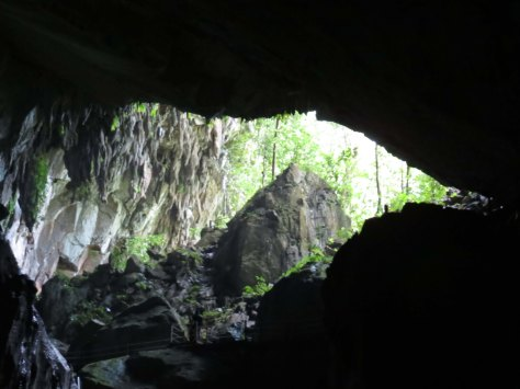 Gunung Mulu World heritage Area