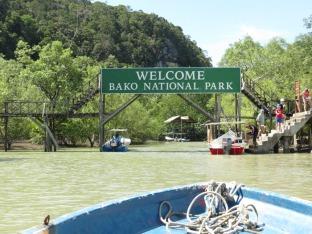 arriving at Bako