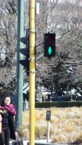 During the 2014 election Kate appears on Wellington pedestrian lights