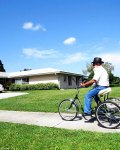 web3-wheeled-horse-and-buggy