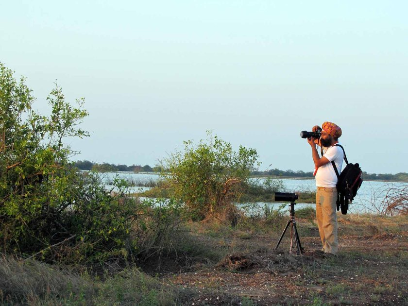 Khijadia bird sanctuary. Gujarat