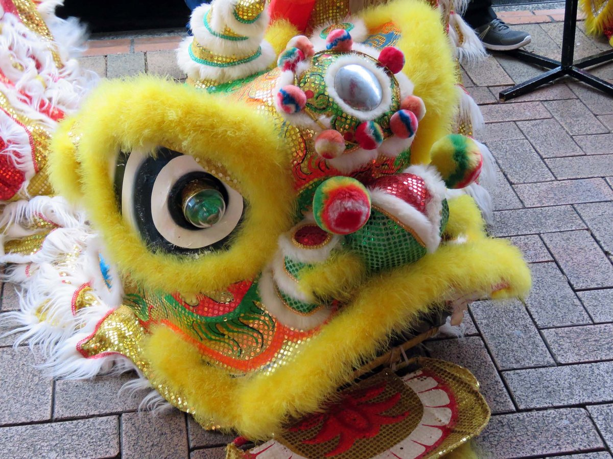 Wellington welcomes the Chinese year of therooster
