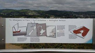 today in wellington NZ (7)