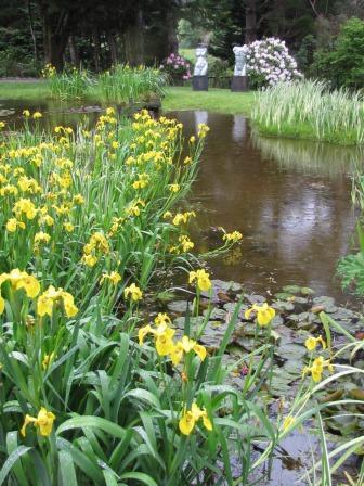 Wellington Garden