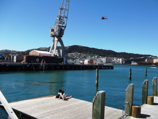 Enjoying the sun Wellington Harbour