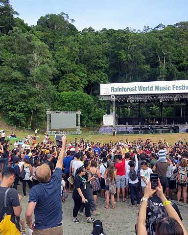 Drumming at the Rainforest WorldFestival
