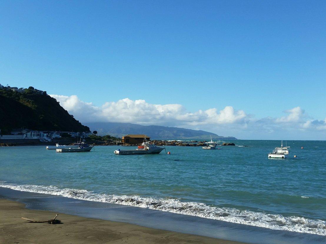 Island Bay … my Monday morningwalk