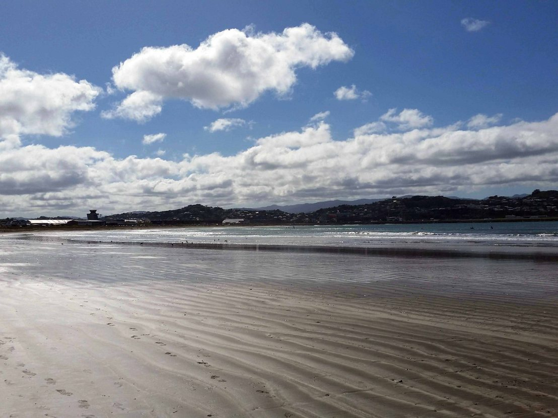 Taking a Monday morning walk on Lyall Bay